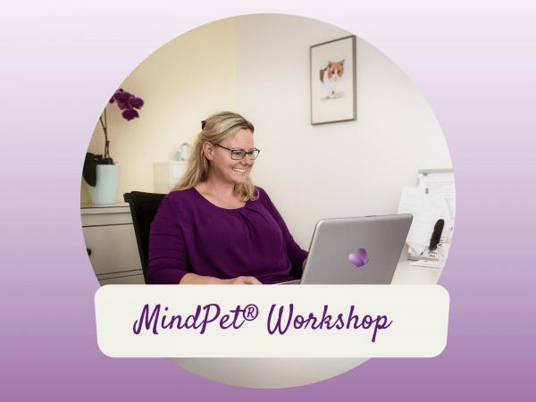 MindPet Workshop